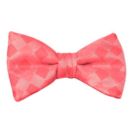 Watermelon Patterned Bow Tie