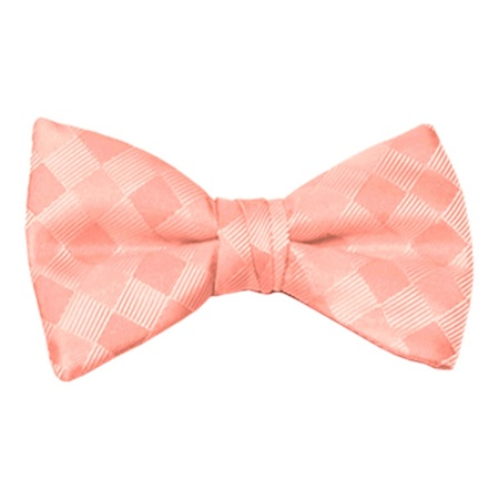 Salmon Patterned Bow Tie