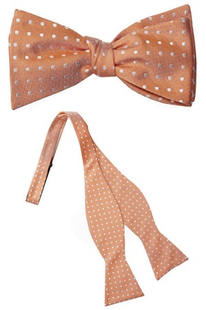 Virginia Silk Self Tie Bow Tie
